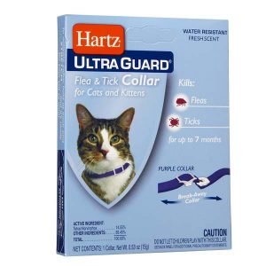 Hartz-Ultra-Guard-Flea-&-Tick-Collar-for-Cat-and-Kittens-vong-co-tri-ve