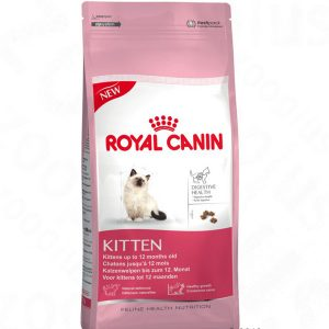kitten-thucanhatkho-royalcanin