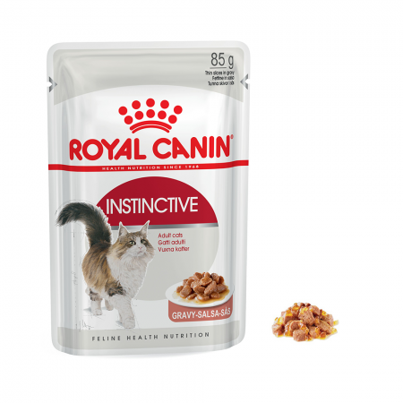 pate canin instinctive jelly 85g