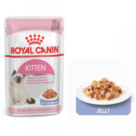 pate canin kitten jelly 85g
