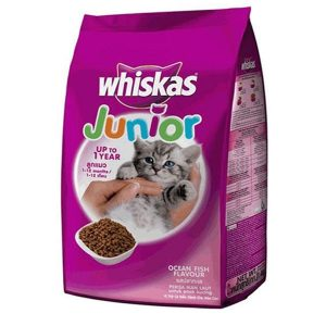 whiskas-junior-cabien-thucanchomeocon