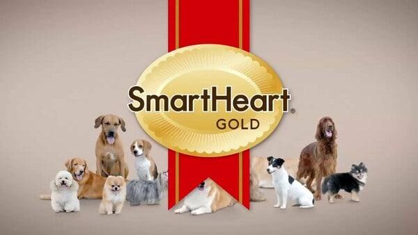 Thương hiệu Smartheart – Thái Lan