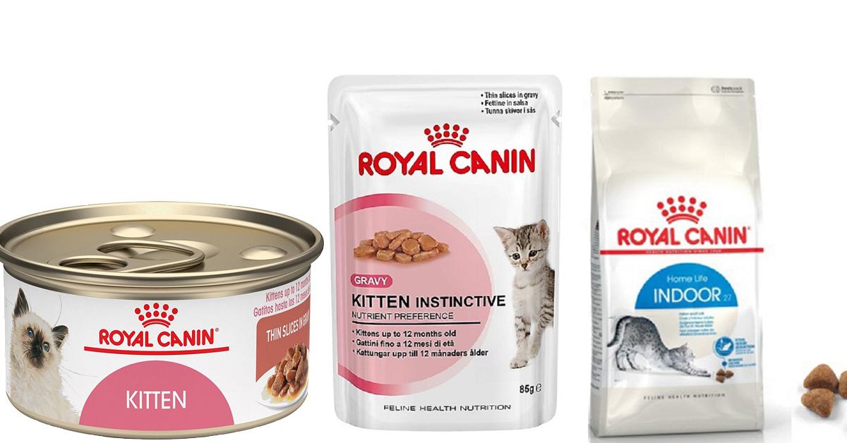 [Review] thức ăn Royal Canin cho mèo có tốt không?[Review] thức ăn Royal Canin cho mèo có tốt không?